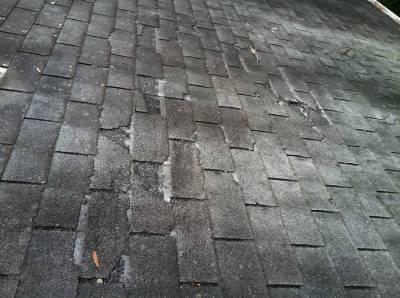 shingles_in_need_of_inspection