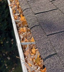 gutter_leaves